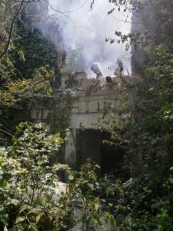 Növényzettel sűrűn benőtt, elhagyatott épület égett