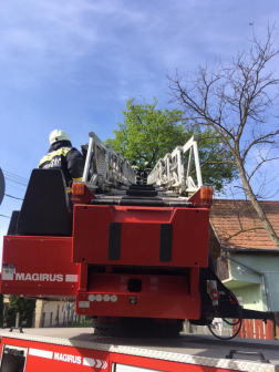 Létra segítségével dolgoztak a tűzoltók a helyszínen